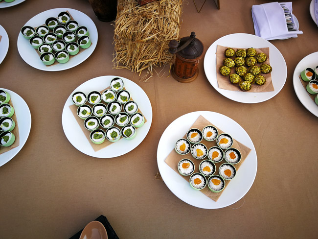 catering-matrimonio-torino-piemonte-aperitivo6